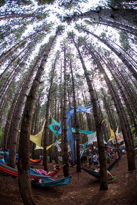 Electric Forest Announces 2012 Festival Dates