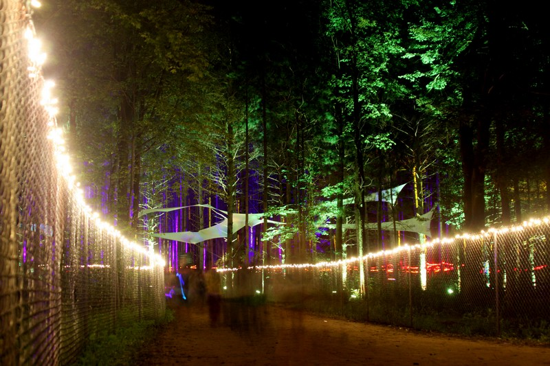 Electric Forest Announces Lineup Additions, Curated Events, and More